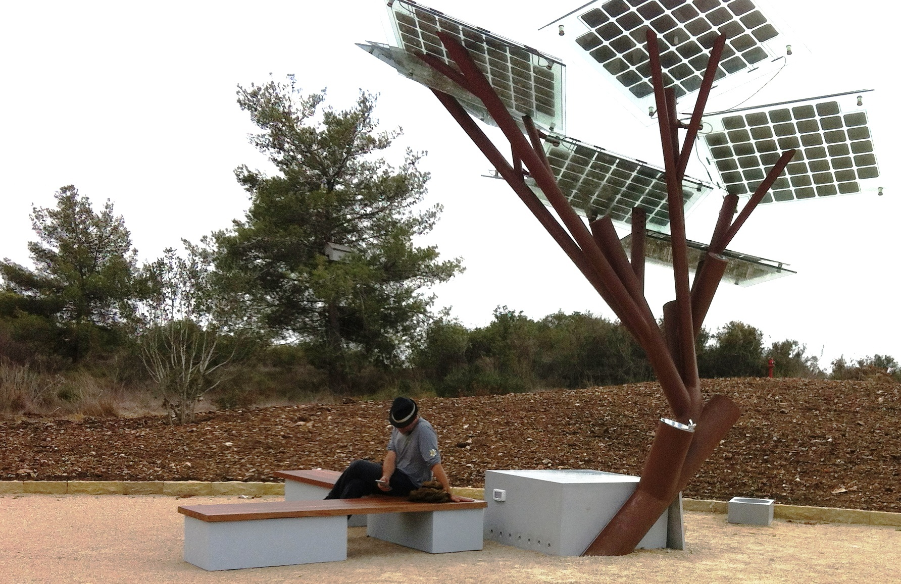Want Wi-Fi From A Tree? Check Out The E-Tree!