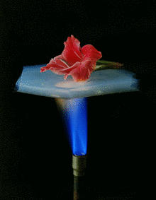 "Aerogels - also known as ""frozen smoke"""
