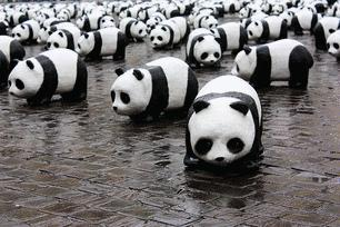 Too Many Pandas & Not Enough ZooKeepers - Animal Farms vs Content Farms!