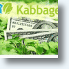 Need A Little Kabbage To Finance Your Small Business?
