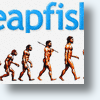 Is Leapfish, Search&#039;s Missing Link?