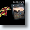 Blackberry Tablet Is &quot;Flashing&quot; Its Way Into The iPad Marketplace