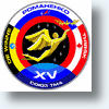 Russian Orphan Designs Winning Spaceship Logo
