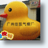 Huge Inflatable Rubber Ducks Now Available Online In China