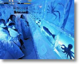 Ice Aquarium Leaves Freshly Caught Sea Creatures (and Visitors) Cold