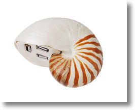 Sea Shell Shape USB Hub Adds Style to Your Desktop