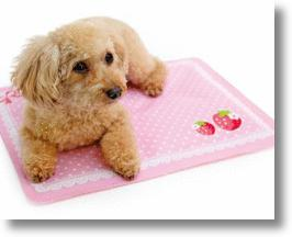 Hot Dog? Chill Your Collie with a Cool Pet Pad!