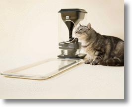 The Bistro Smart Cat Feeder