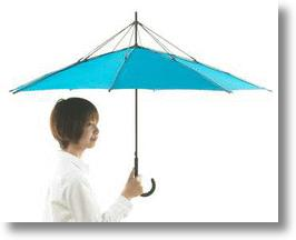 Typhoons Can Blow, I've Got My UnBRELLA!