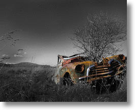 Trunks In Their Trunks: The Top 10 Abandoned Cars Colonized By Trees