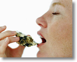 Japanese Scientists Listen to Oysters, Pick Up Pearls of Wisdom