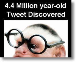 4.4. million yr-old tweet