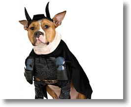 Dark Knight Batman Dog Costume