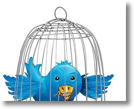 Trial By Twitter Over Occupy Wall Street Tweets Could Set Privacy Precedent