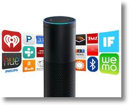 Virtual Voice Assistant