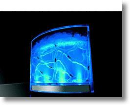 AntWorks Illuminated Ant Farm