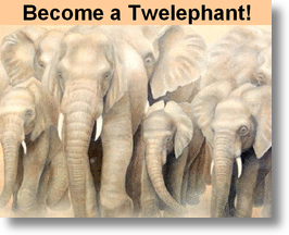 Become a Twelephant!