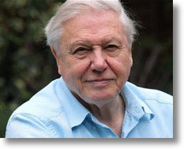 David Attenborough Is Making A Virtual Reality Nature Documentary