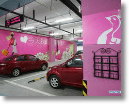 China&#039;s Ladies Only Parking Spaces Put Female Shoppers in the Pink