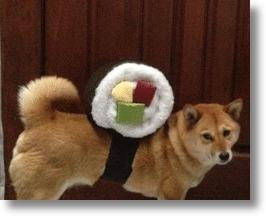 Sushi Roll Dog Halloween Costume