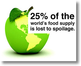 World Food Spoilage Infographic
