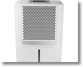 Dehumidifiers reduce mold, mildew and bacteria in your home