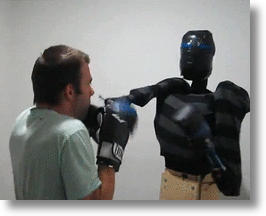 Punching Pro: Your Boxing Robot Companion