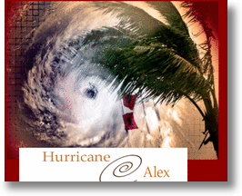 Hurricane Alex! 