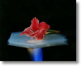 Aerogels - also known as &quot;frozen smoke&quot;