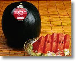 Japanese Black Rind Watermelons Taste Sweet, Cost Plenty!