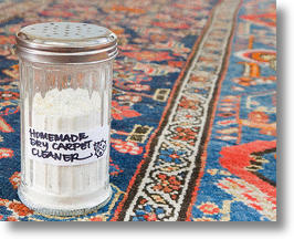 DIY Carpet Powder