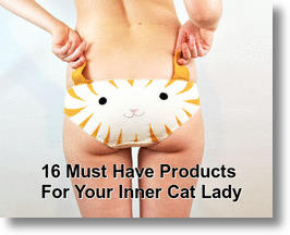 Must-Have Guide For The Crazy Cat Lady In You