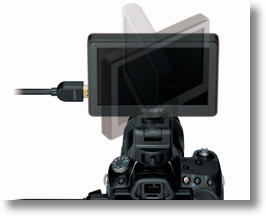 Sony will unveil its clip-on monitor in March 2011