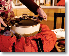 Wonderbag Eco Slow Cooker