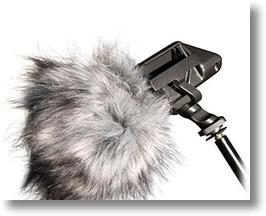 "A shotgun mic with Rode ""dead kitten"" windmuff"