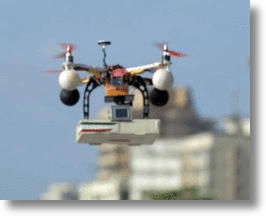 Pizza Delivery via Drone in India