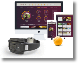 Voyce, a dog's continuous health monitor