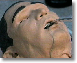 Robot Swine Flu Patient Sweats, Cries, Moans... and Dies!