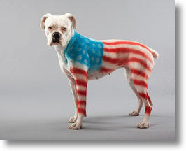 PetPaint: paint your pet's costume