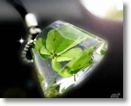 7-Leaf Clover Cell Phone Charm Gives You The Luck Of The Fryrish