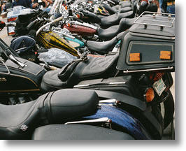 Cancer Awareness: Motorcycle Seat Shields