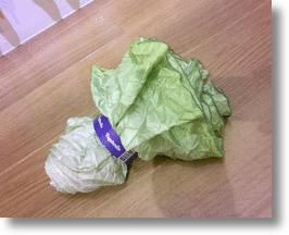 Lettuce-like Vegetabrella Turns Rainy Days to Salad Days