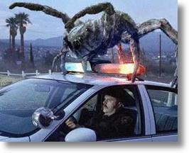 Spiders Prompt Recall Of 870,000 Toyota Vehicles