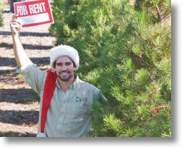 Live Christmas Tree Rentals