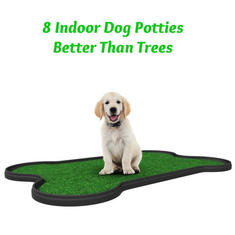 8 Dog Potties That Are Better Than Trees