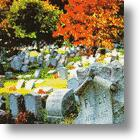 Advance Planning: Burial With Your Pet