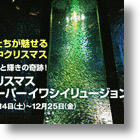 Christmas Tree Of Sardines Sparkles At Yokohama Aquarium