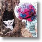 Tree Hole Paintings Add Life To China&#039;s Concrete Jungle