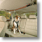 3 Gadgets To Keep Your Dog Safe & Your Car Clean!
