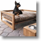 Superior Comfort, Health, And Style In The Bambu Pet Lounger &amp; Diner